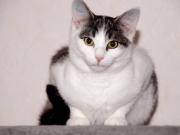 Fiona5