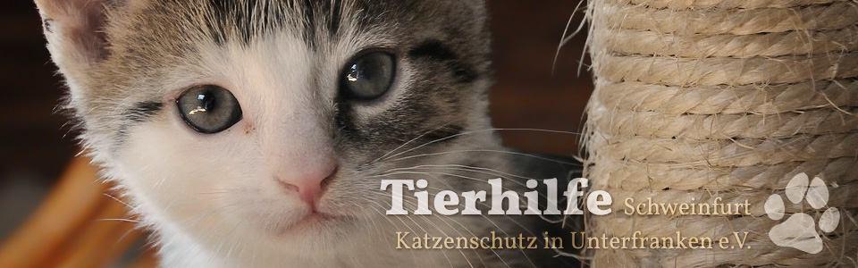 Tierhilfe Schweinfurt – Katzenschutz in Unterfranken e.V.