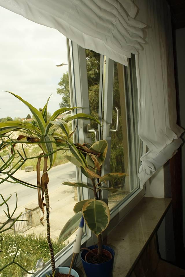 Kippfenster