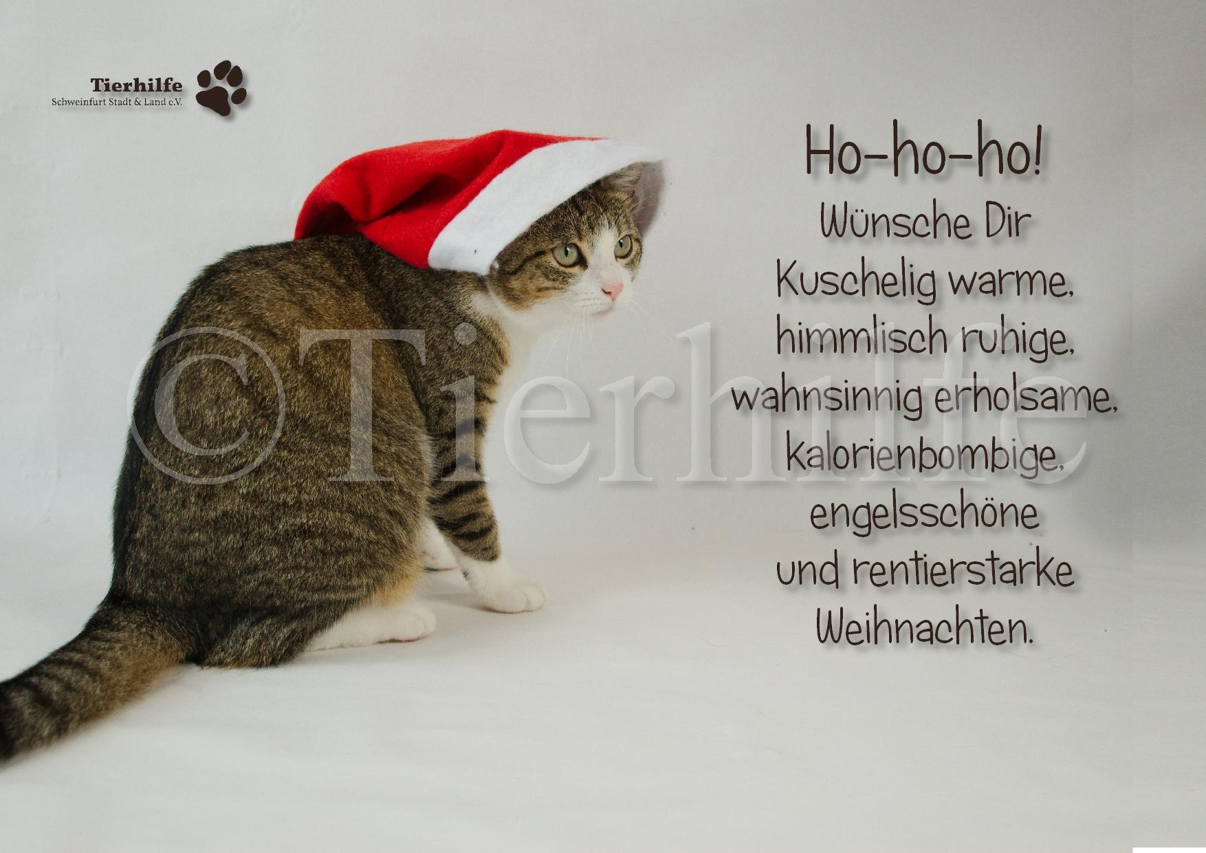 weihnachten-12