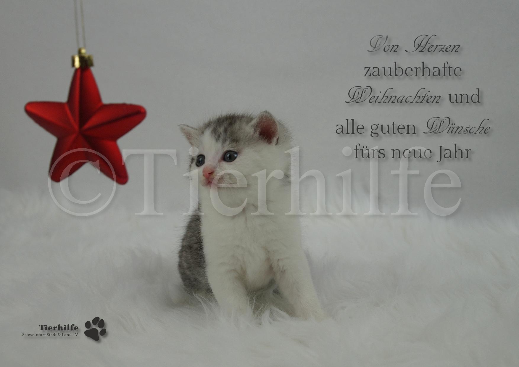 weihnachten-6