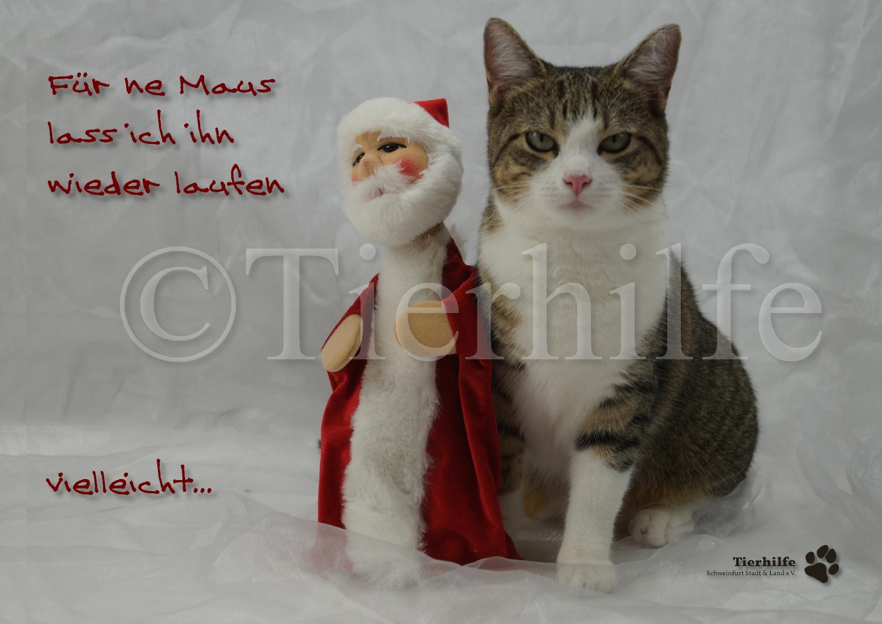 weihnachten-9